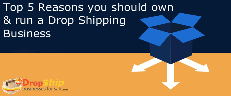 Top 5 reasons to own and run a drop shipping website business
