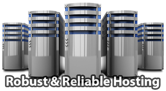 Robust website hosting for an internet white label business
