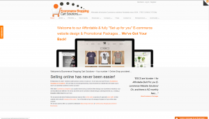 Turn key online website business for sale. Buy a business