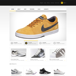 Shoes  drop shipping ecommerce website online business for sale
