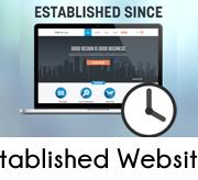 Established online business websites for sale