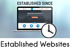 Established online business websites for sale