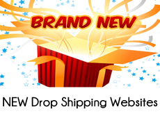 Brand new drop shipping website businesses for sale