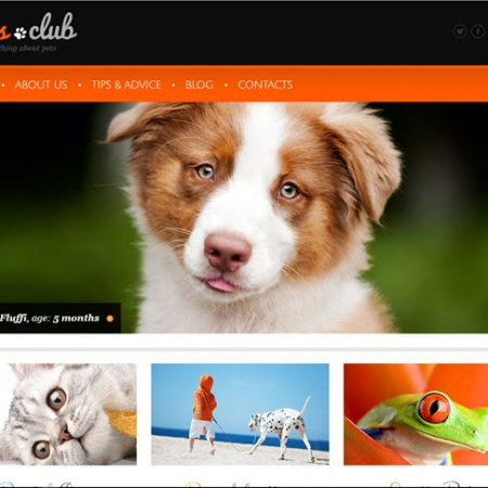 Pets drop shipping internet business for sale