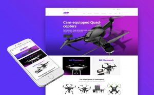 Buy a drones drop shipping website business for sale
