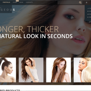 Hair drop shipping website business for sale company