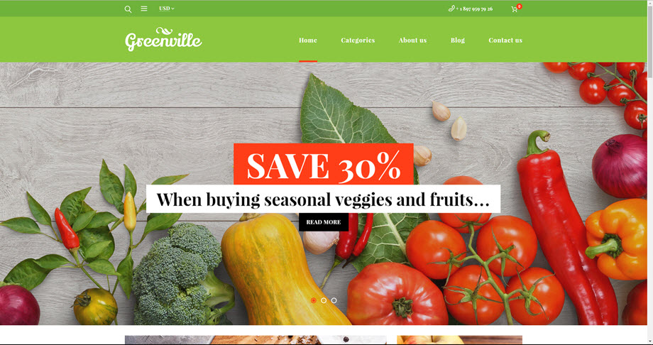 Organic foods drop shipping website template business