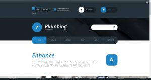 Plumbing supplies and taps drop ship website business for sale