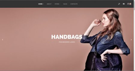 Womens hand bags drop shipping website business for sale