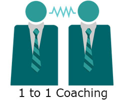 1 to one business coaching online