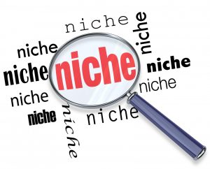 Choose your own ecommerce or drop shipping niche market