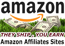 Amazon Affiliate website businesses for sale