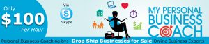 Personal online business coaching drop ship buisness