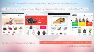Drop-ship-website-business-for-sale