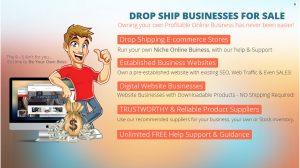 buy-an-online-drop-shipping-website-business