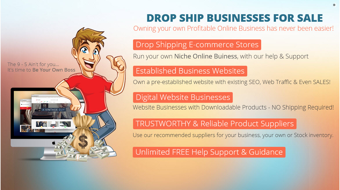Drop Ship Businesses for sale® | TurnKey Drop Shipping