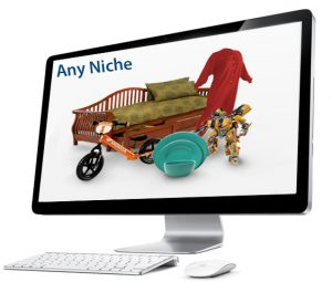 Done for you digital drop shipping store in any niche