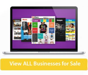 View all website business opportunities for sale