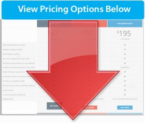 See online business packages pricing and options