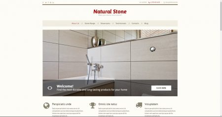 Flooring drop shipping website business for sale