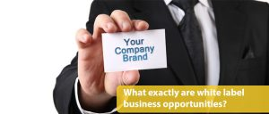 learn more about white label businesses for sale