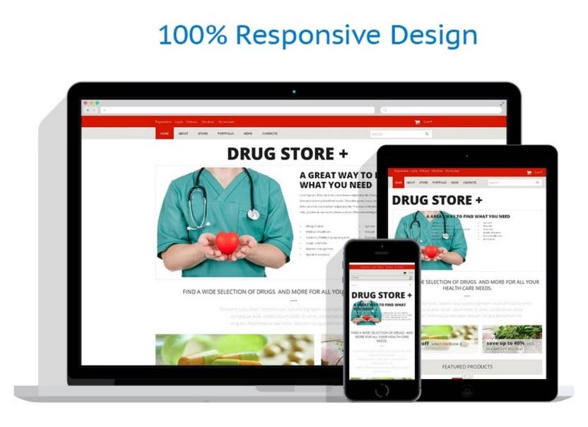 Buy a turn key drop ship website online business