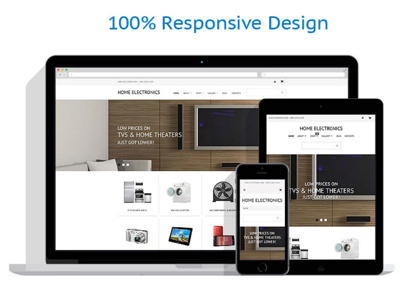 Home electronics theme drop ship businesses for sale for Online website for sale