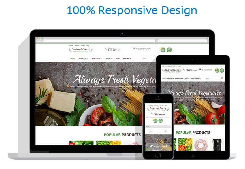 Natural foods theme template website business