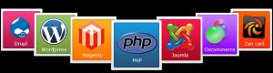 One click install website hosting servers