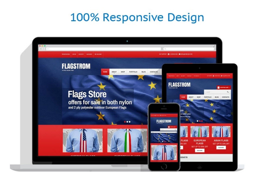 Politics store drop shipping website business template