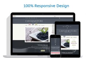 Caviar & Beluga internet website business work from home for sale