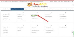 click-through-to-drop-shipping-website-for-sale
