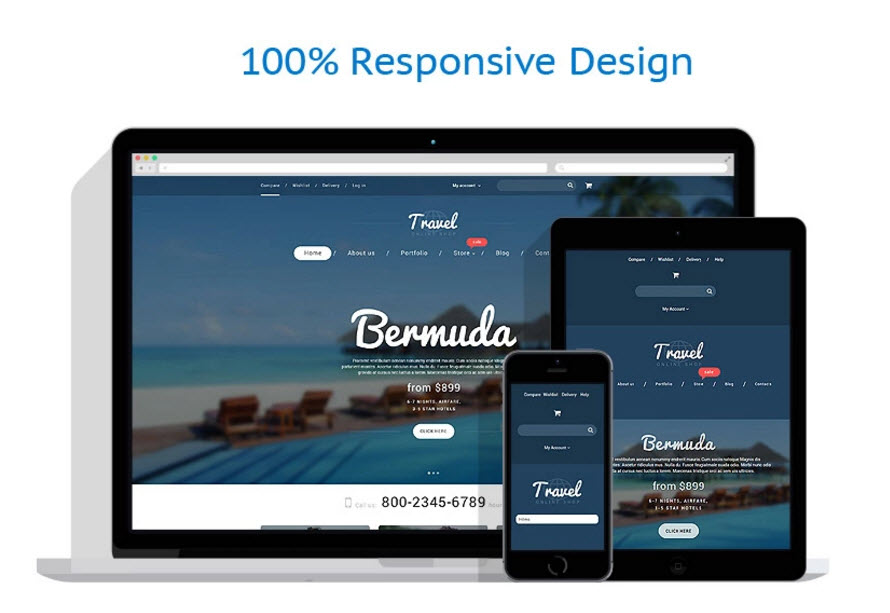 Travel internet website business opportunity theme for sale