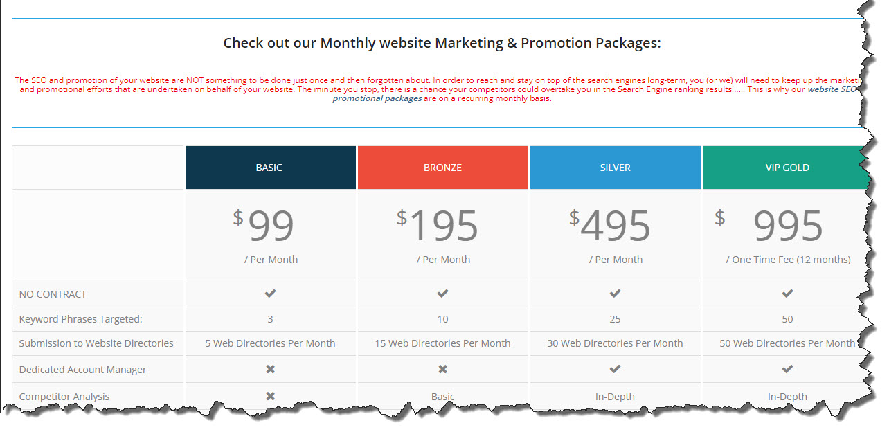Website marketing and promotional packages