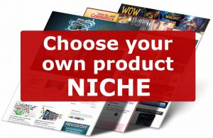 Choose your own drop ship business product niche