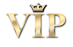 VIP Guaranteed income online business plans