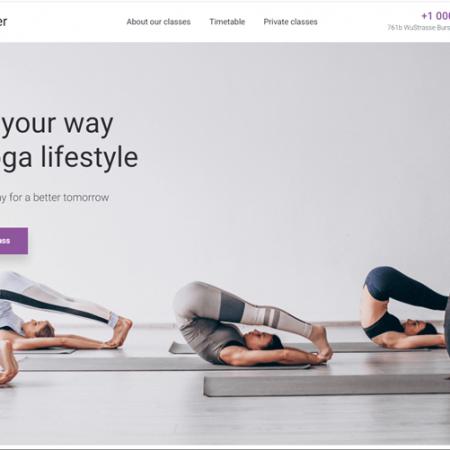 Yogo drop shipping online business